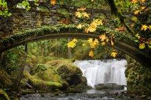 Whatcom Falls Park in Bellingham WA