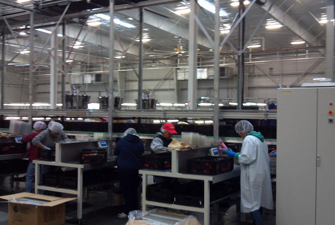 Windset Farms, Industrial Engineering